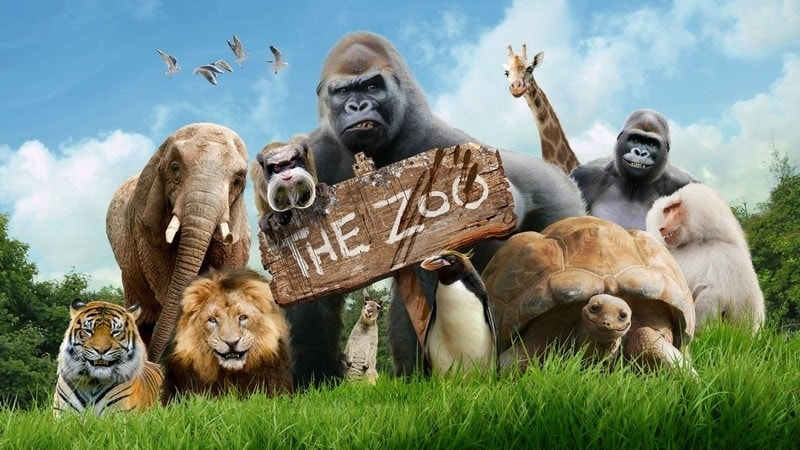 zoo dream meaning, dream about zoo, zoo dream interpretation, seeing in a dream zoo