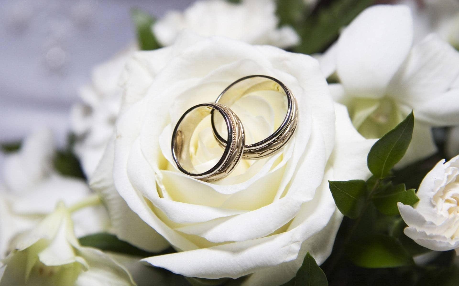 wedding dream meaning, dream about wedding, wedding dream interpretation, seeing in a dream wedding