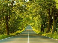 Road Dream Meaning