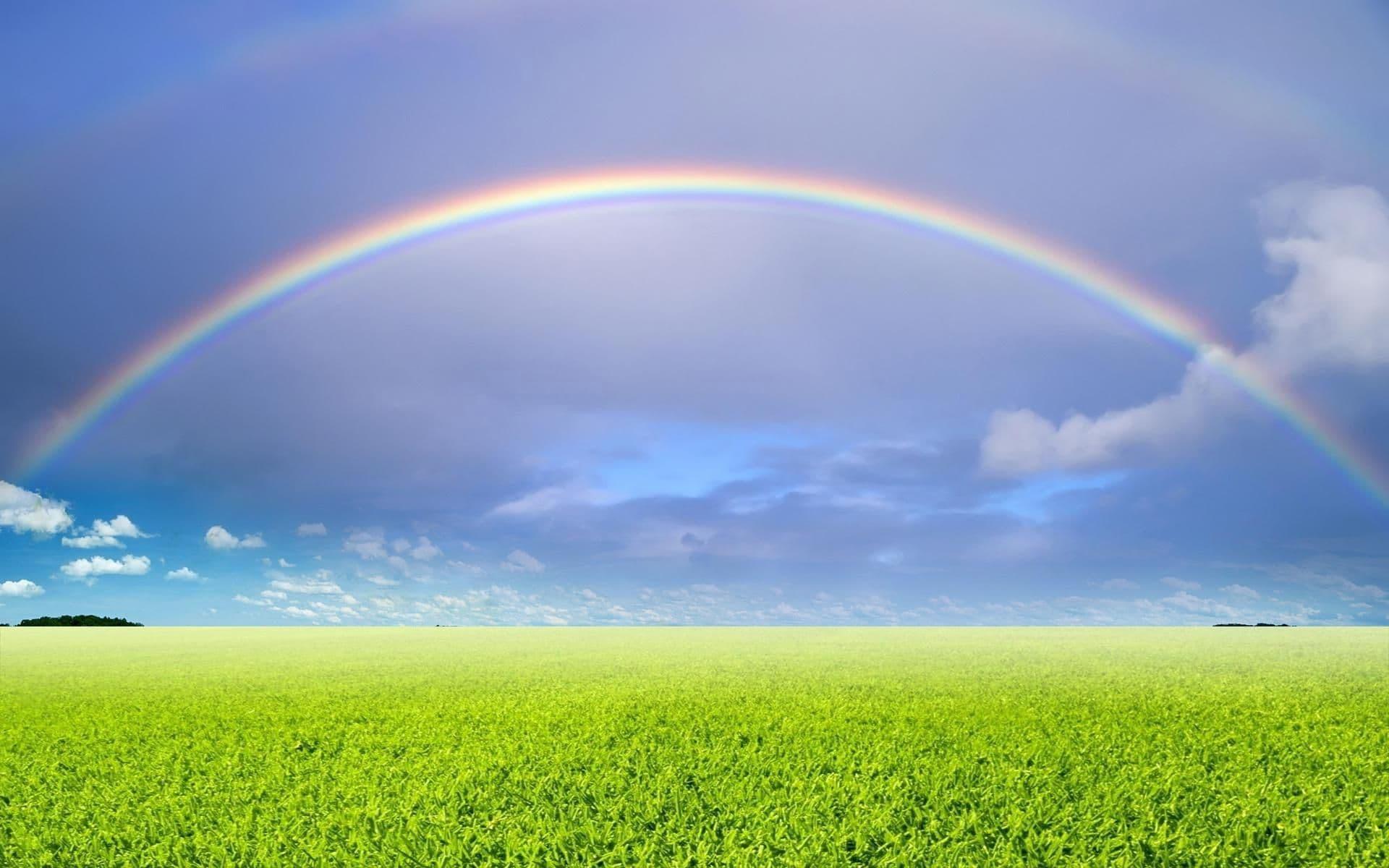 Rainbow Dream Meaning