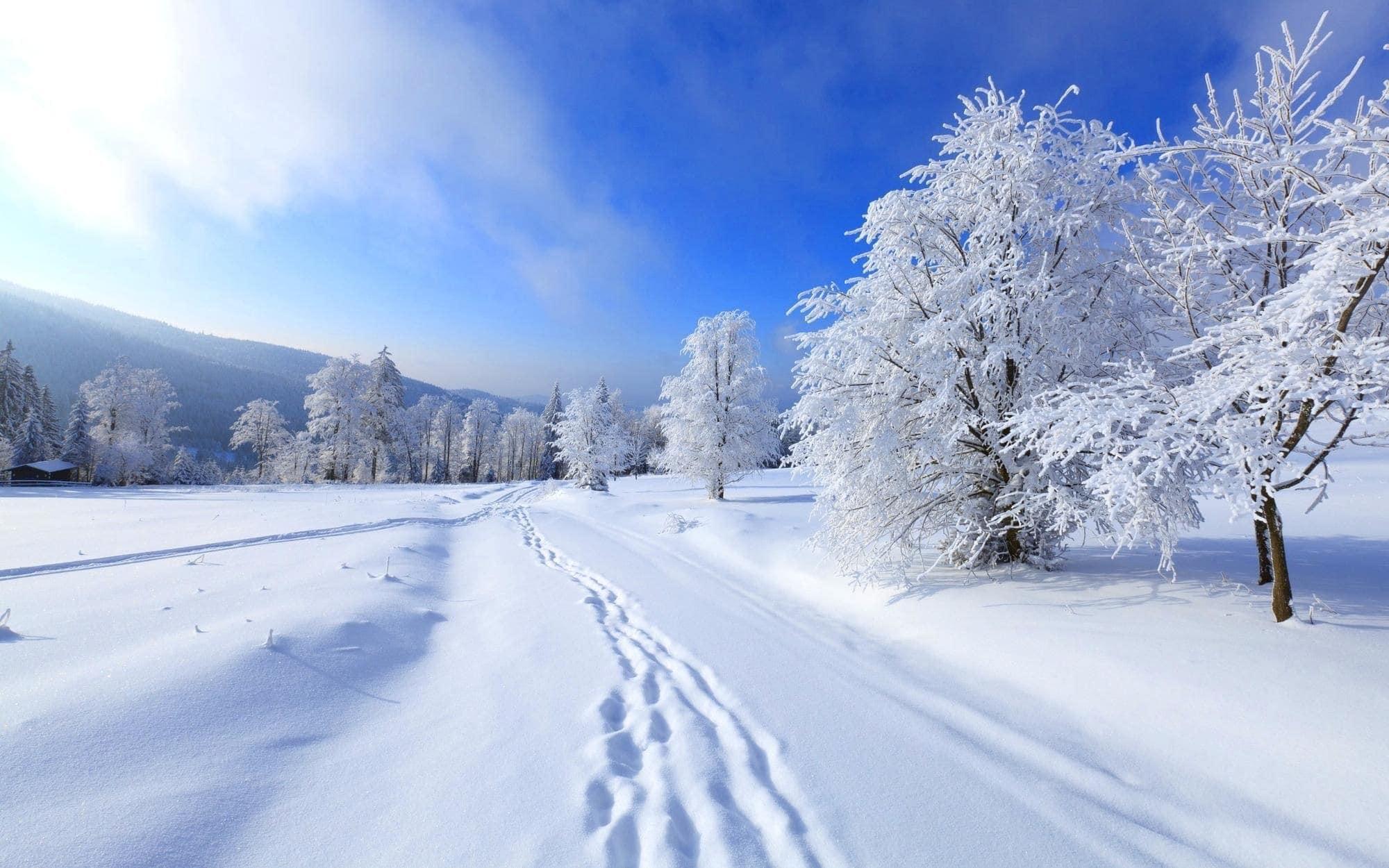winter dream meaning, dream about winter, winter dream interpretation, seeing in a dream winter