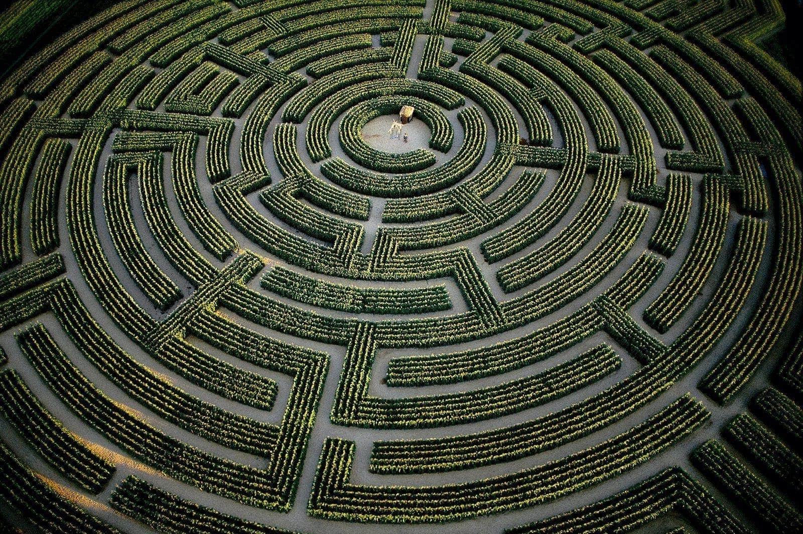 labyrinth dream meaning, dream about labyrinth, labyrinth dream interpretation, seeing in a dream labyrinth