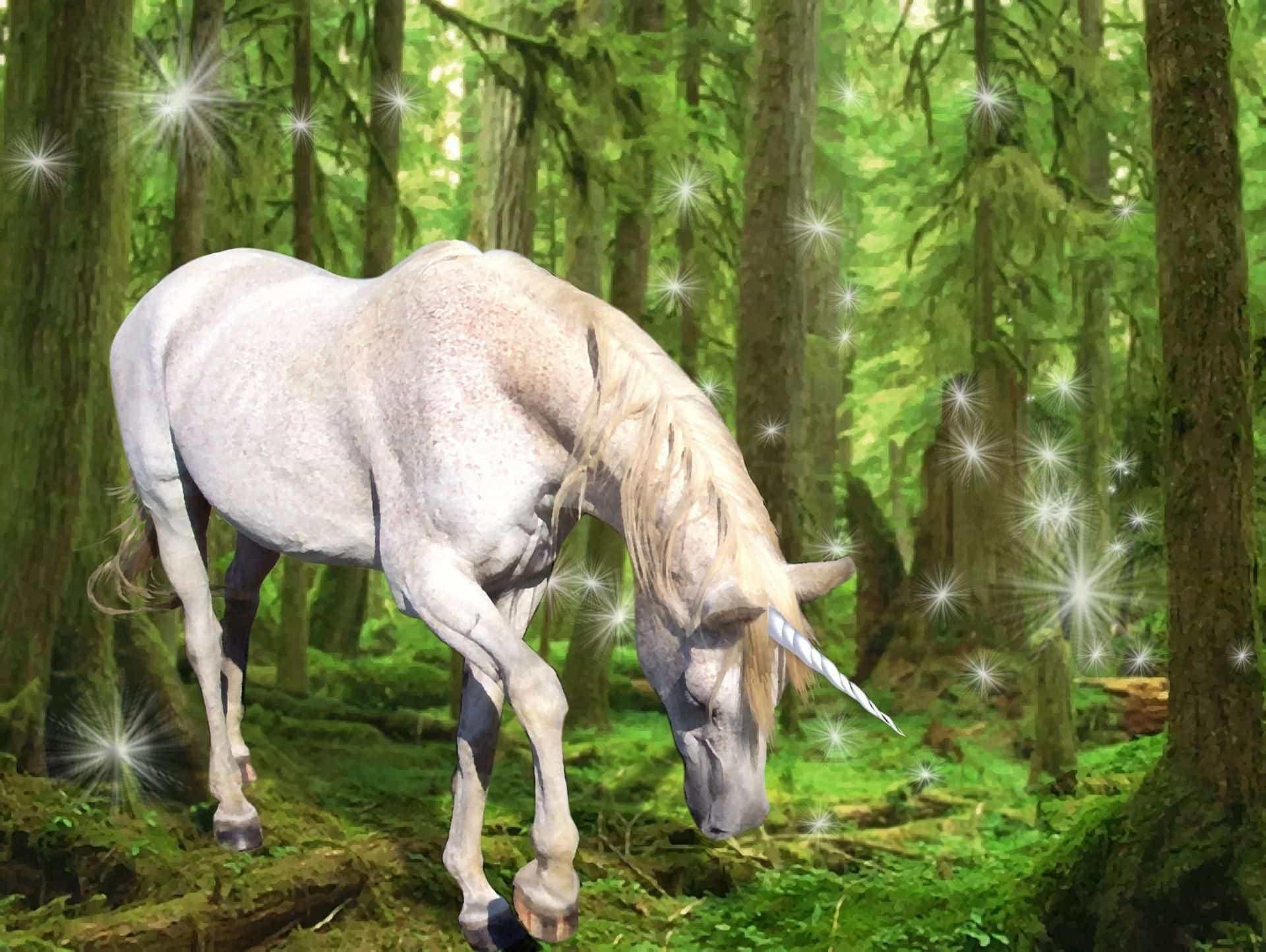 unicorn dream meaning, dream about unicorn, unicorn dream interpretation, seeing in a dream unicorn