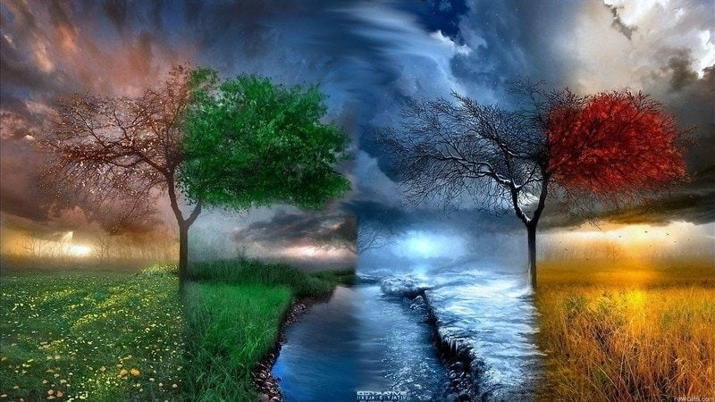 picture dream meaning, dream about picture, picture dream interpretation, seeing in a dream picture