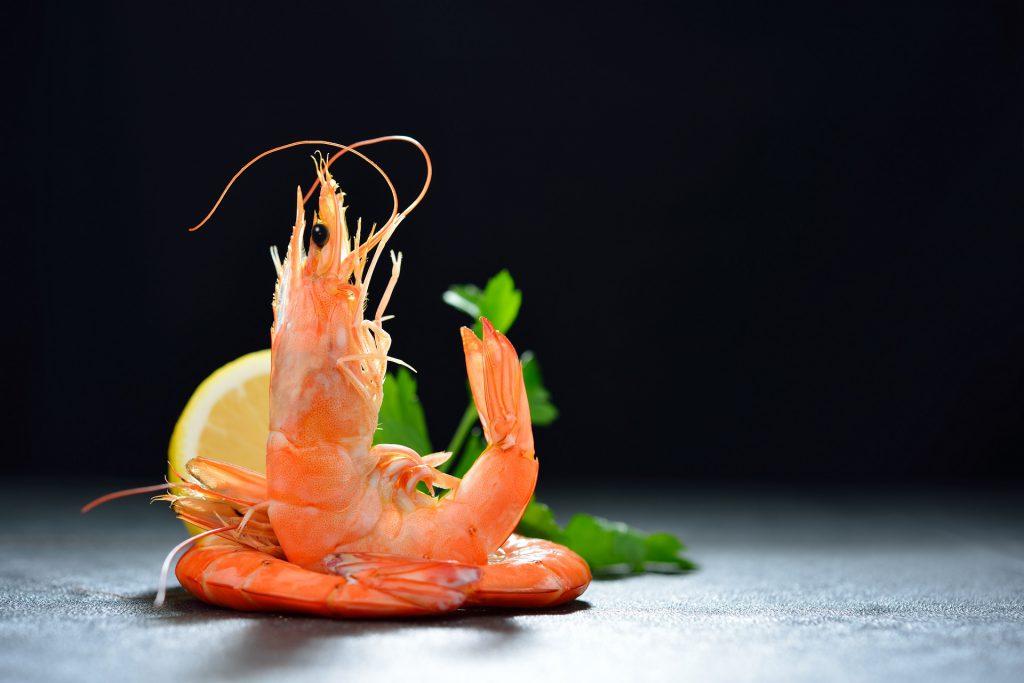 shrimp dream meaning, dream about shrimp, shrimp dream interpretation, seeing in a dream shrimp