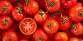 Tomato Dream Meaning